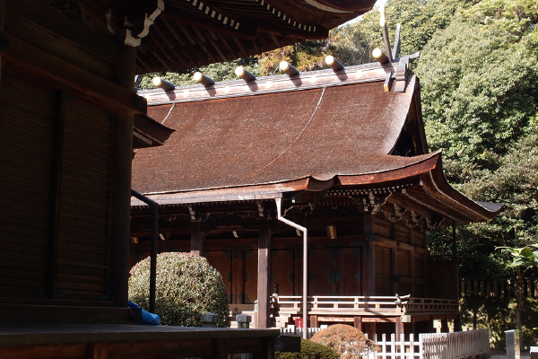 瑞垣の隙間より本殿を仰ぐ(多田神社)