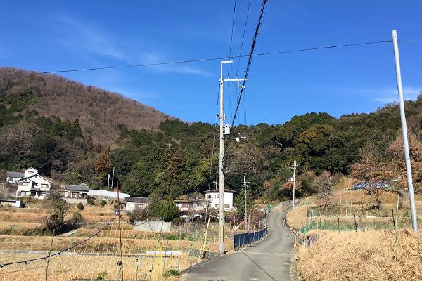 吉川八幡神社へと続く参道(吉川八幡神社)